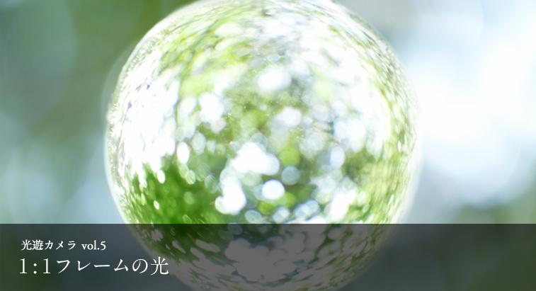 光遊カメラ vol.5 - 1:1フレームの光